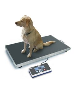 Kern Platform scale EOS Heavy duty parcel and veterinary platform scale with extra large stainless steel weighing plate